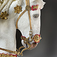 Left close up color image of Louis XIV (equestrian) aka. Louis XIV of France,