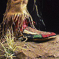 Left close up color image of Crow Warrior aka.  , by George Stuart.
